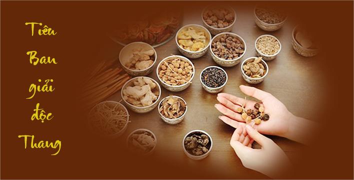 Bài thuốc Đông y đặc trị viêm da an toàn, ngăn tái phát