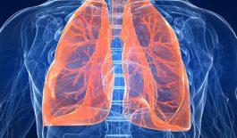 Tìm hiểu về bệnh co thắt phế quản và cách điều trị