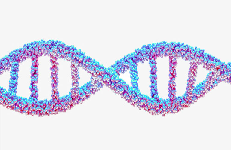 yếu tố di truyền gây viêm da dị ứng