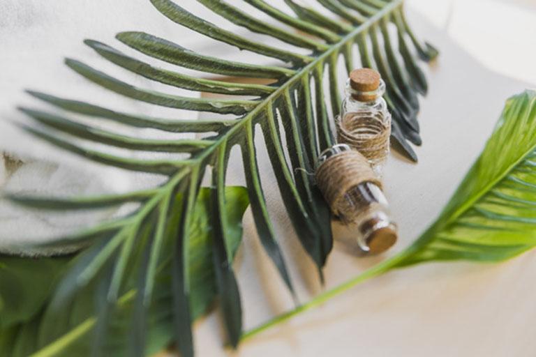 Tinh dầu hỗ trợ điều trị viêm tai giữa