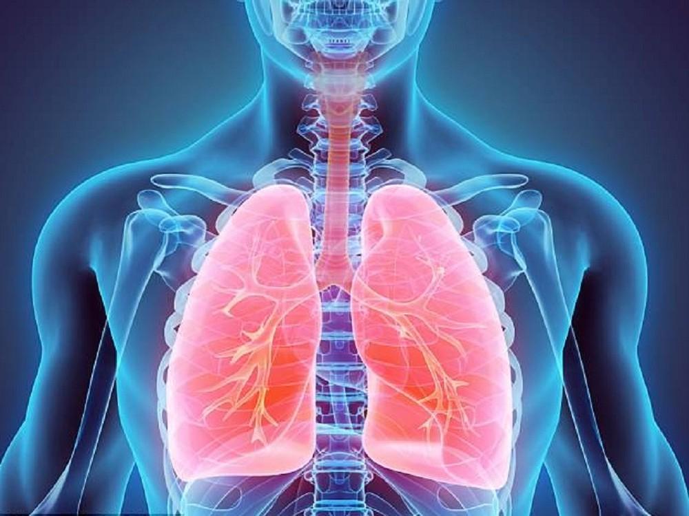viêm phế quản và viêm phổi