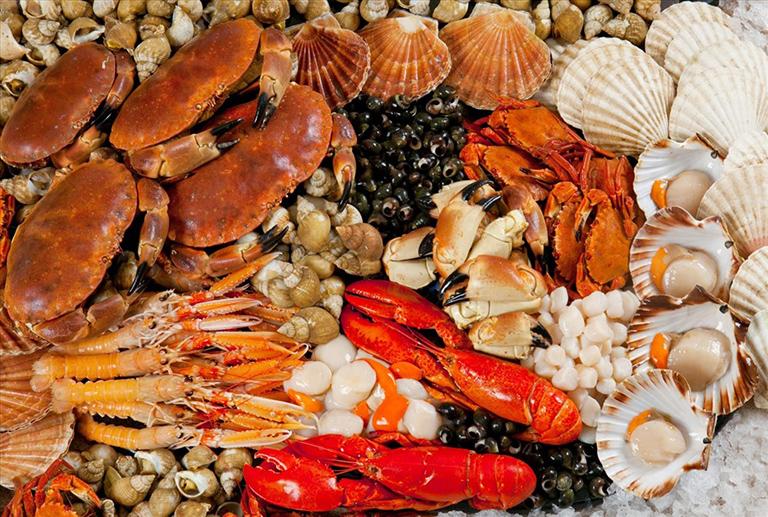 dị ứng hải sản và động vật có vỏ