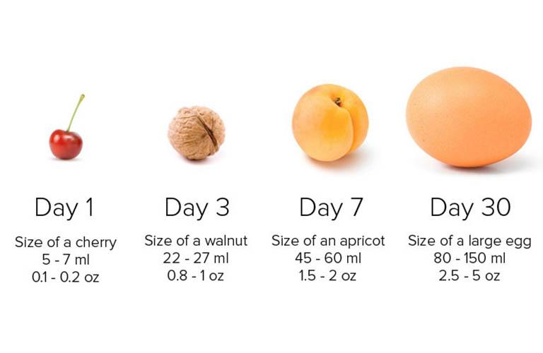 kích thước dạ dày ở trẻ sơ sinh thay đổi theo thời gian