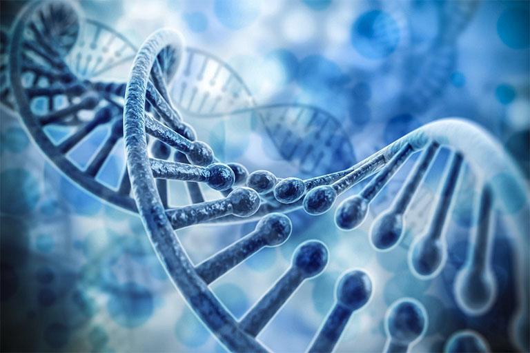 gen gây rối loạn cương dương
