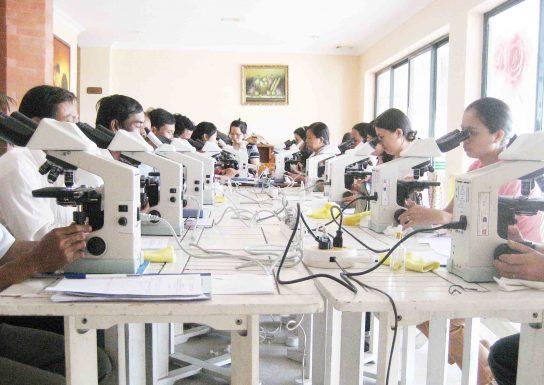 nghiên cứu tại Viện Sốt rét - Ký sinh trùng - Côn trùng Trung ương