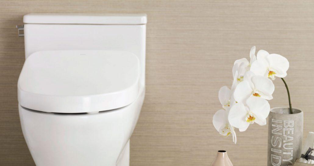 Đi vệ sinh đúng cách hạn chế bị trĩ