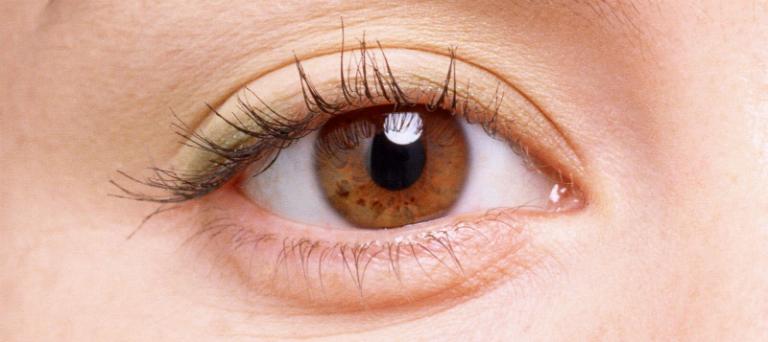 Dung dịch nhỏ mắt Estobra hỗ trợ điều trị các bệnh như viêm túi lệ, viêm giác mạc, ngăn ngừa nhiễm trùng sau phẫu thuật,...