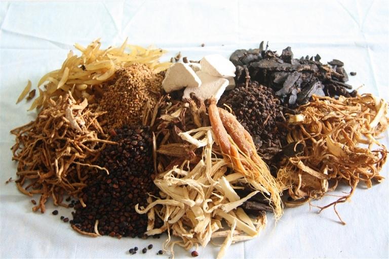 Chữa bệnh gout bằng thuốc Đông y cổ truyền