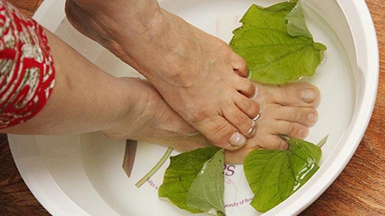 Ngâm chân chữa gút bằng nước lá lốt