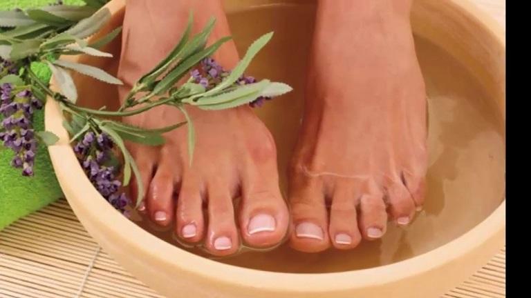 Chữa trị bệnh gout bằng thảo dược tự nhiên là một phương pháp hiệu quả