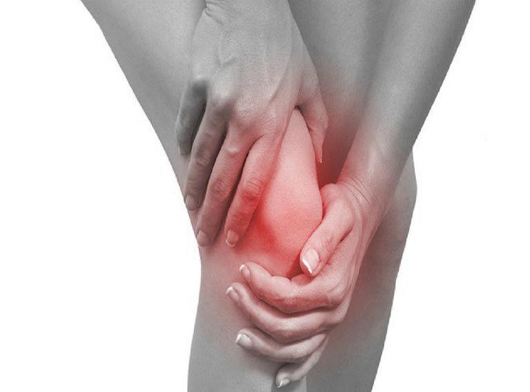 Một số bài thuốc dân gian từ cây cối xay có thể điều trị hiệu quả bệnh đau nhức xương khớp, hạ sốt, bệnh trĩ,...