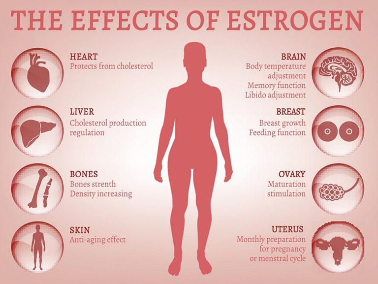 thuốc đặt estrogen