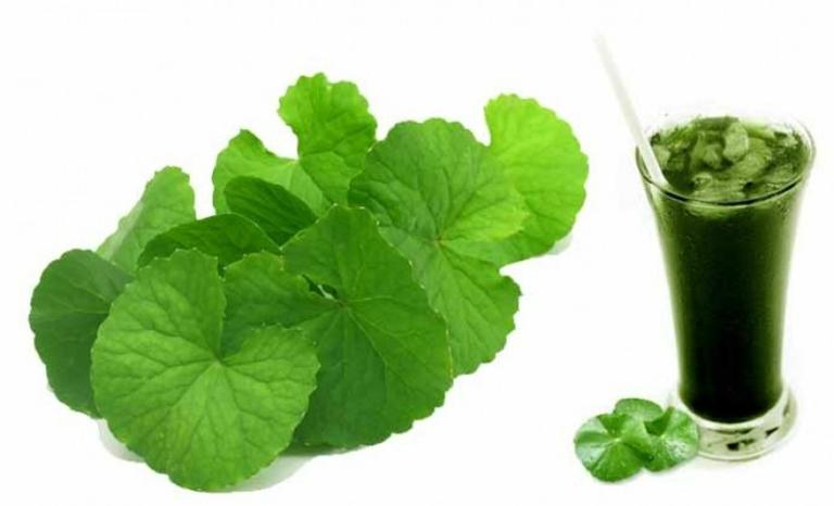 Nước ép/sinh tố rau má là một trong số những bài thuốc trị đau thần kinh tọa.