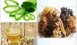 Phương pháp chữa bệnh viêm da tiết bã bằng thuốc nam