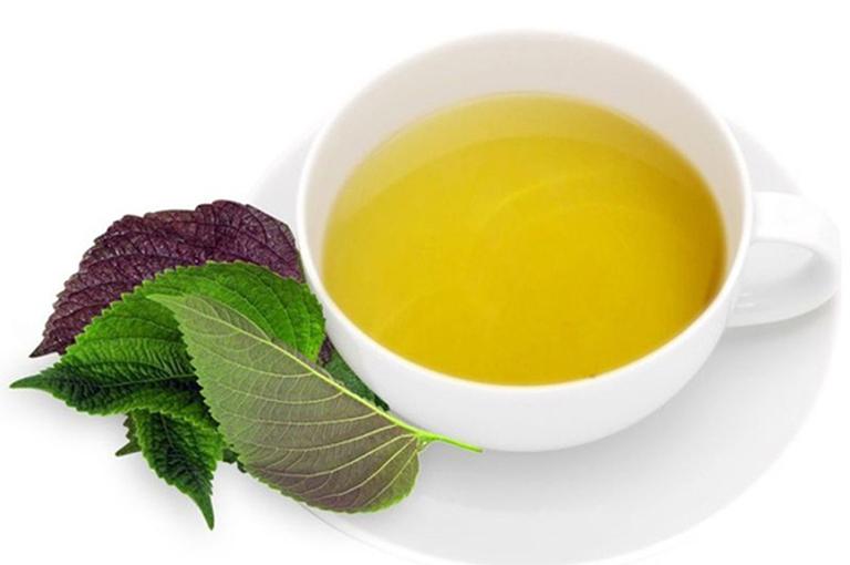 Bài thuốc uống nước lá tía tô chữa bệnh trĩ