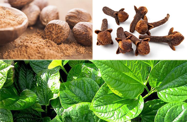 Bài thuốc từ nhục đậu khấu, nụ đinh hương và lá trầu không chữa bệnh viêm họng