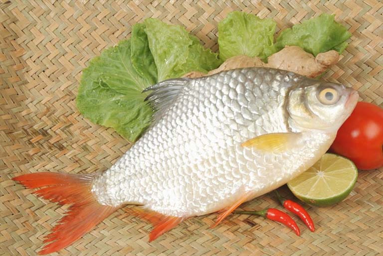 Chữa viêm tai giữa bằng mật cá mè