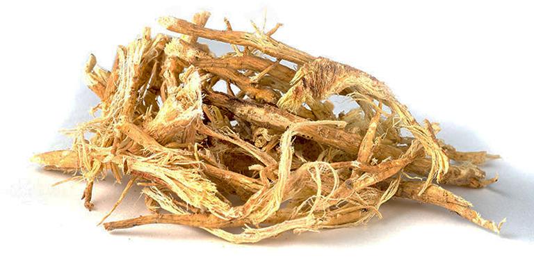 Hoàng kỳ là một trong những vị thuốc quý trong kho tàng thuốc Đông y