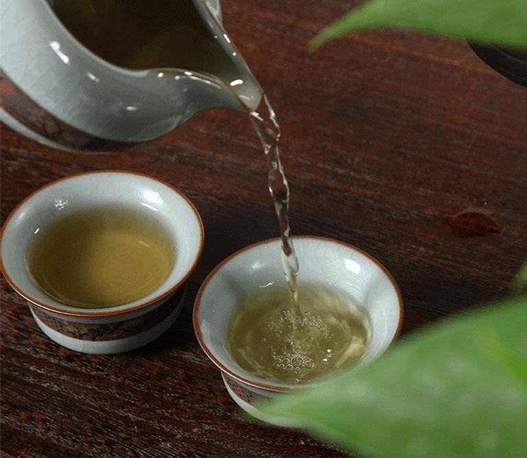 Bài thuốc uống từ cây bạch hoa xà thiệt thảo chữa viêm phổi