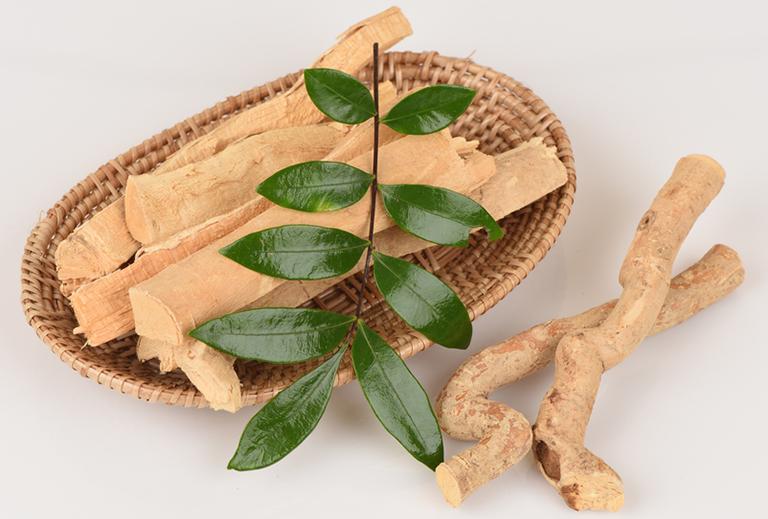 Bài thuốc chữa yếu sinh lý đơn giản bằng cây Mật nhân
