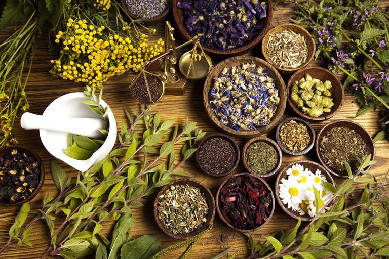 Bài thuốc chữa bệnh yếu sinh lý bằng lá lốt và 8 loại thảo dược khác