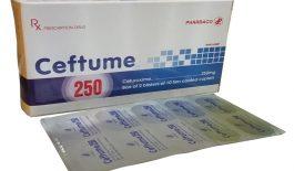 Thuốc Ceftume và những thông tin cần biết