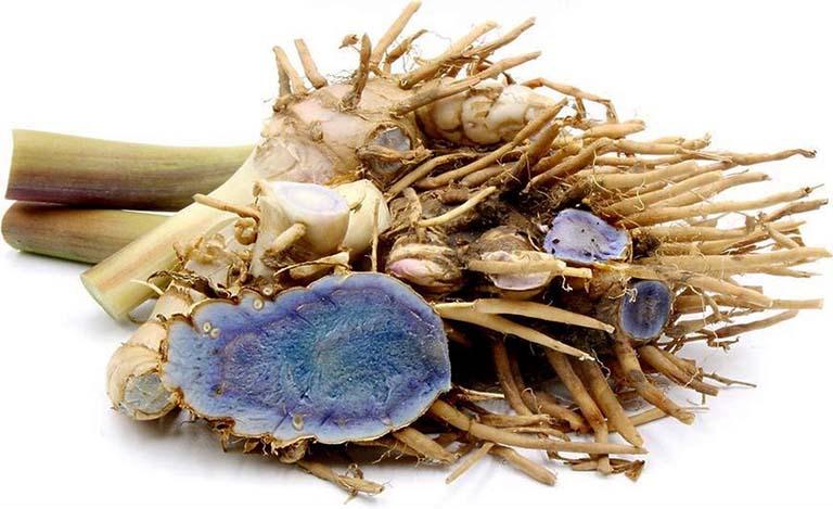 Nghệ đen còn được gọi là Nga truật trong Y học cổ truyền và có tên khoa học là Curcuma zedoaria