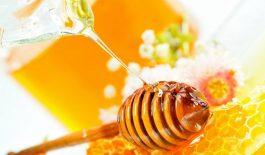 Mật ong có chứa chất kháng sinh tự nhiên, có khả năng chữa chứng ho hiệu quả.