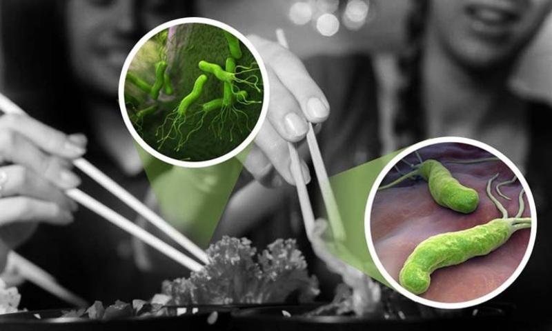 Vi khuẩn có thể lây nhiễm qua thực phẩm