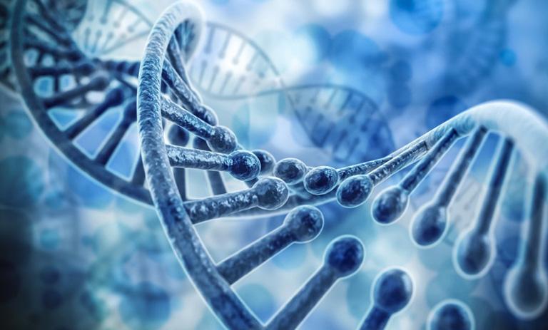 bệnh viêm da cơ địa có di truyền không