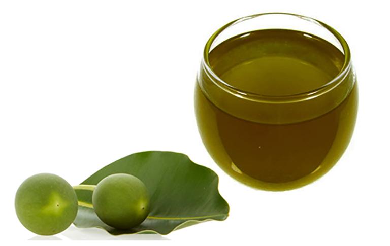 chữa viêm da cơ địa bằng dầu mù u