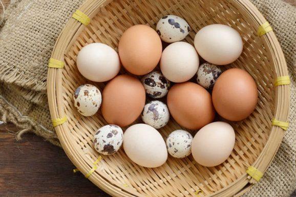 trào ngược dạ dày ăn trứng tốt hay xấu