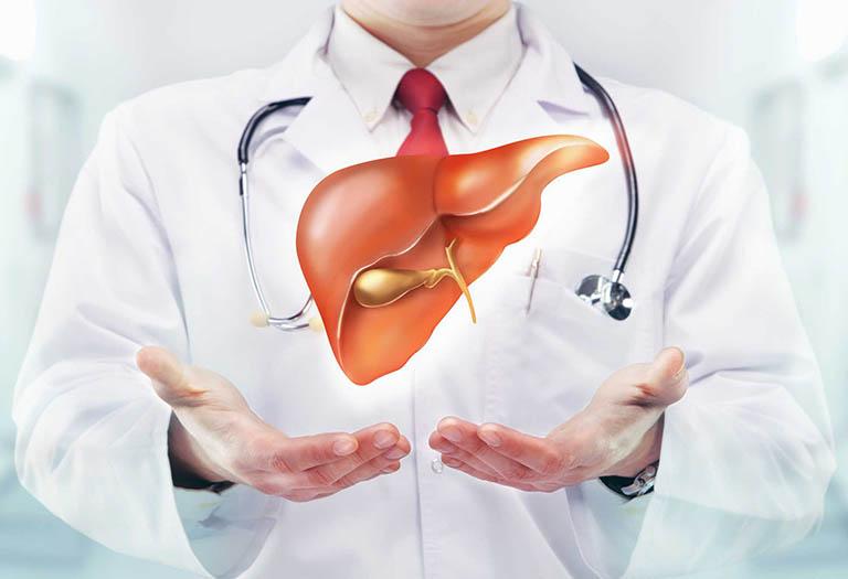 Nóng gan thể hiện cho tình trạng gan bị tổn thương, nóng trong