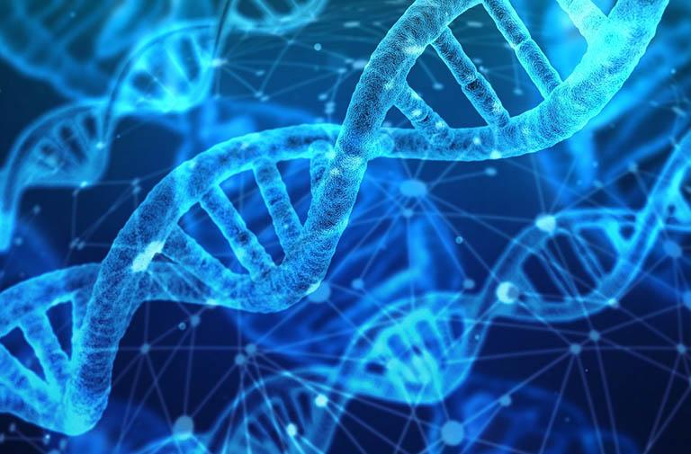 Nguyên nhân gây bệnh tổ đỉa có liên quan đến yếu tố di truyền