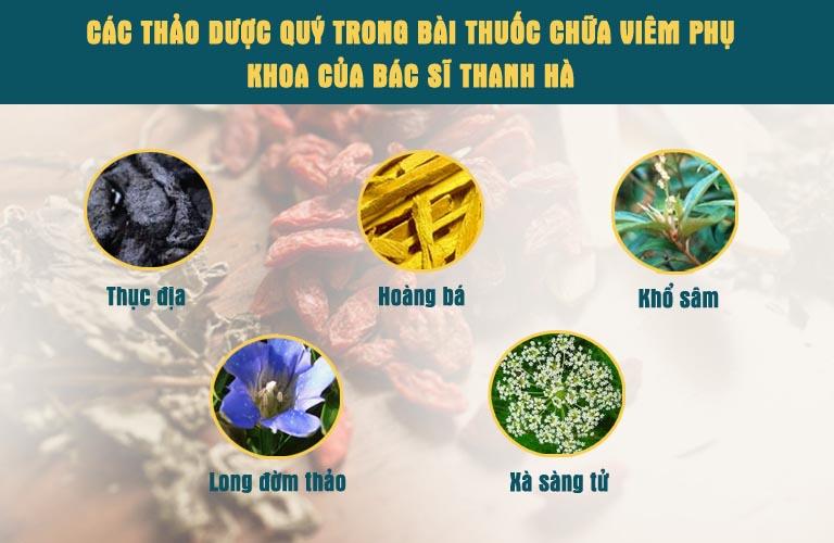 Thảo dược quý trong bài thuốc của bác sĩ Đỗ Thanh Hà