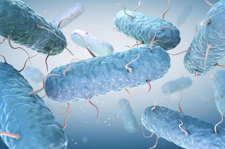 Nhiễm khuẩn hay nhiễm nấm hậu môn