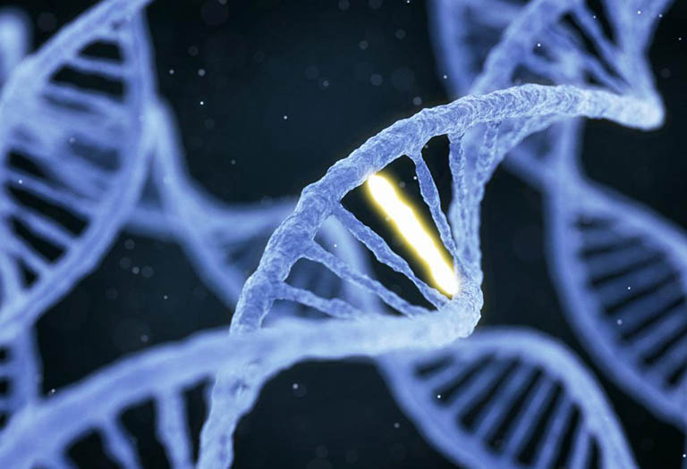 Bệnh viêm cột sống dính khớp mang tính di truyền