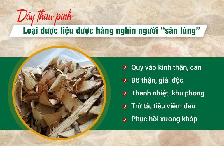 """Dây Thau Pinh - Loại dược liệu của vùng Tây Bắc được hàng nghìn người """"săn lùng"""""""