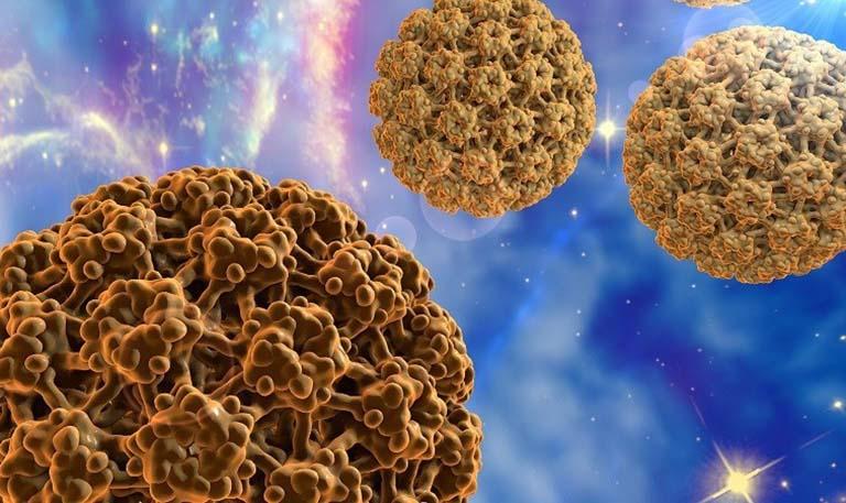 Ung thư cổ tử cung có lây hay di truyền không?