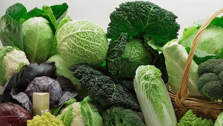 Các loại thực phẩm giàu vitamin E cho mẹ bầu