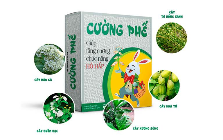 Sản phẩm Cường Phế chứa 100% các thảo dược quý hiếm trong Đông y như cây mào gà trắng, bướm bạc, xương sông, kha tử, tơ hồng xanh,...