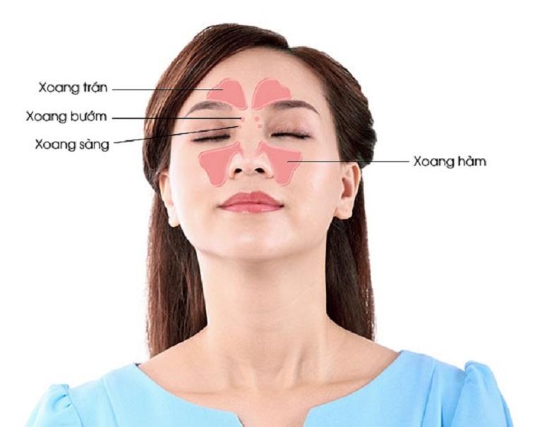 Cấu tạo của xoang mũi