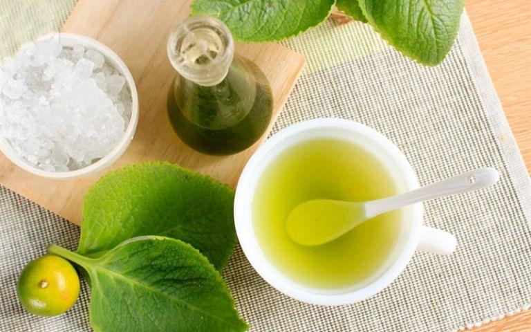 thuốc trị cảm cúm từ tần dày lá