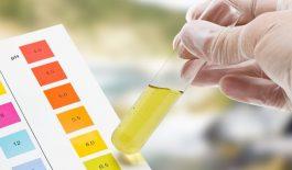 Tiến hành thí nghiệm với dung dịch đổi màu để xác định nước uống có độ pH bao nhiêu là tốt