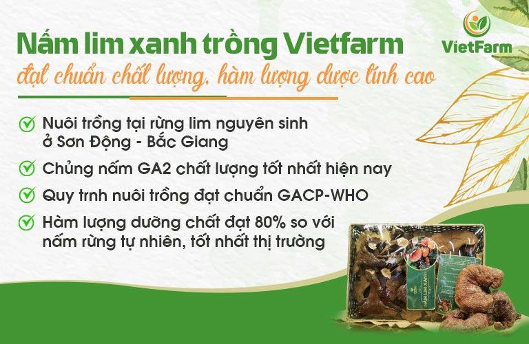 Nấm lim xanh trồng Vietfarm đạt tiêu chuẩn, hàm lượng dưỡng chất cao vượt trội